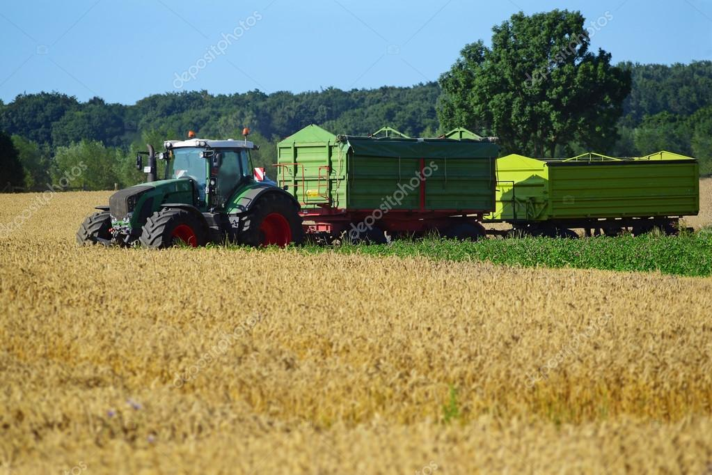 tractor with two trailers at harvest on a wheat field