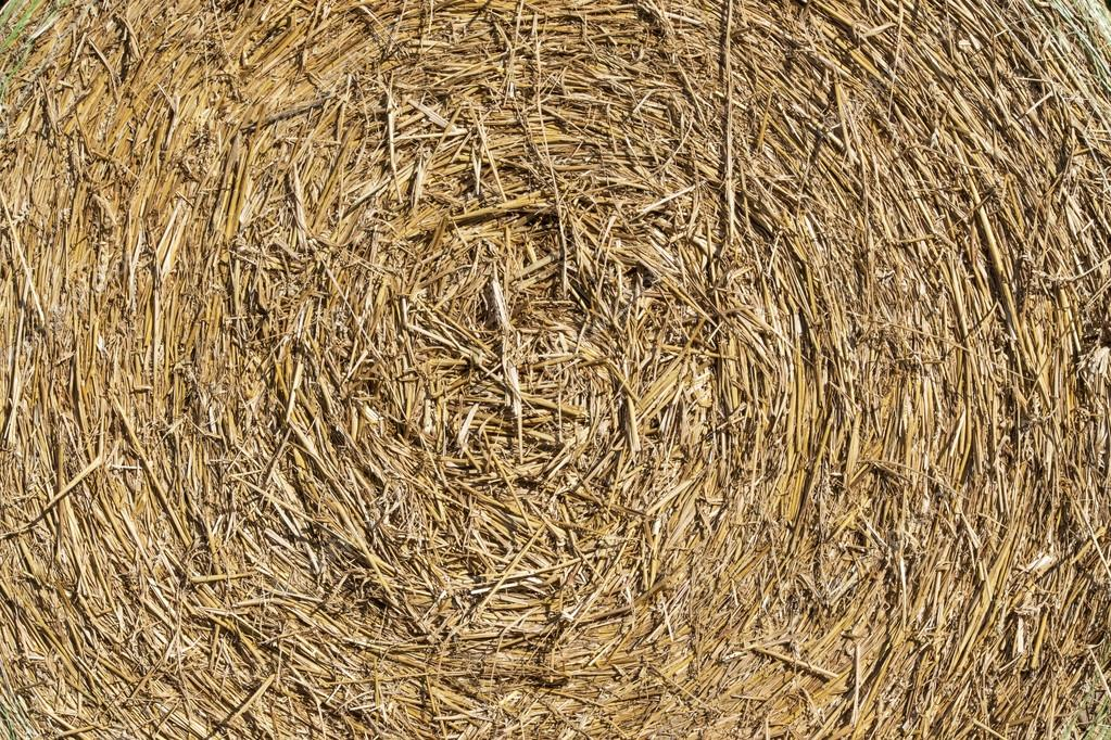 background texture, round straw bale