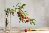 Photo Branch with red wild plums in a glass vase on a rustic wooden ta