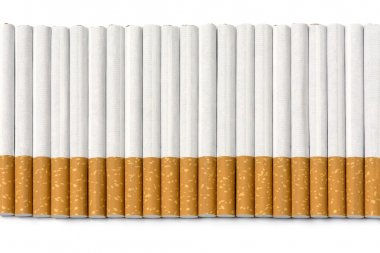 row of filter cigarettes isolated on white background