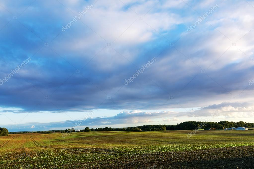 wide field landscape and some agricultural buildings under a big