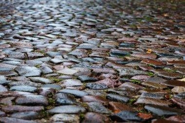 Wet cobblestones in a medieval street, background texture