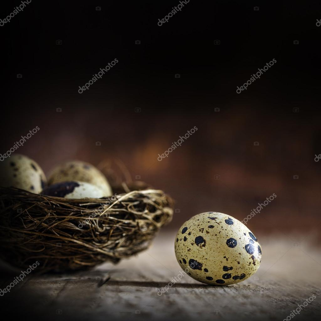 one egg gets out of the nest, rustic wood, dark background