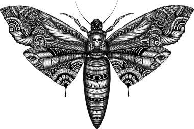 deadhead butterfly