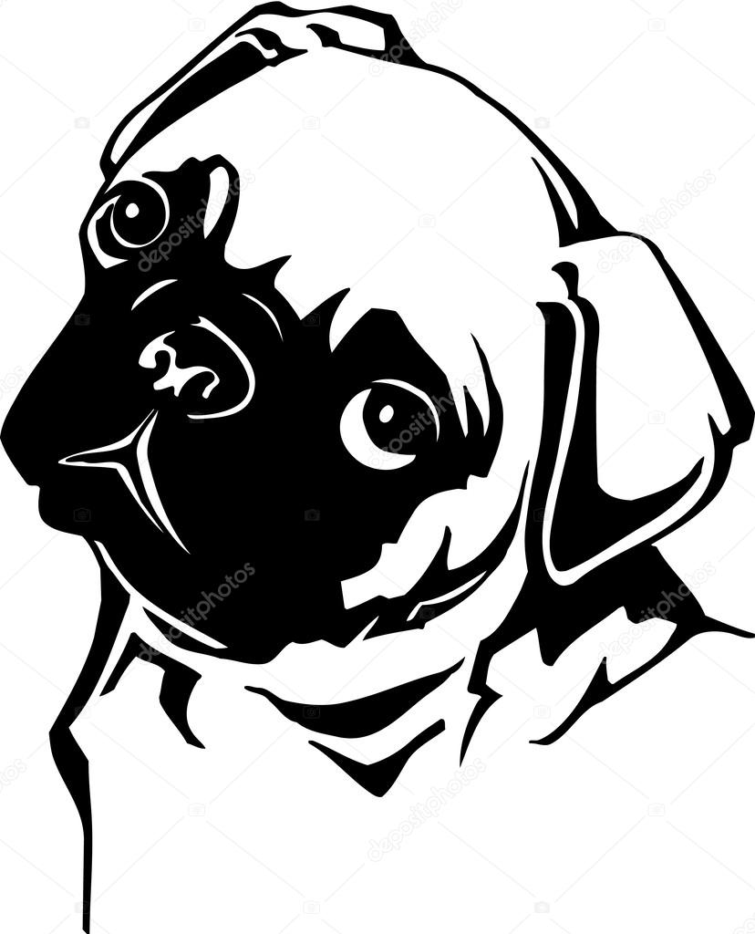 Pug Face Line Drawing : Pug head — stock vector alliedcomputergraphics