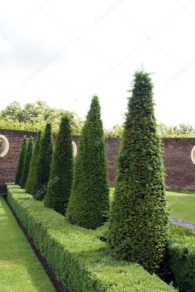 Topiary Trees Garden Art Garden Design Stock Photo C Rose4