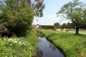 Fiume Eden in esecuzione nel giardino del Castello di Hever, Inghilterra