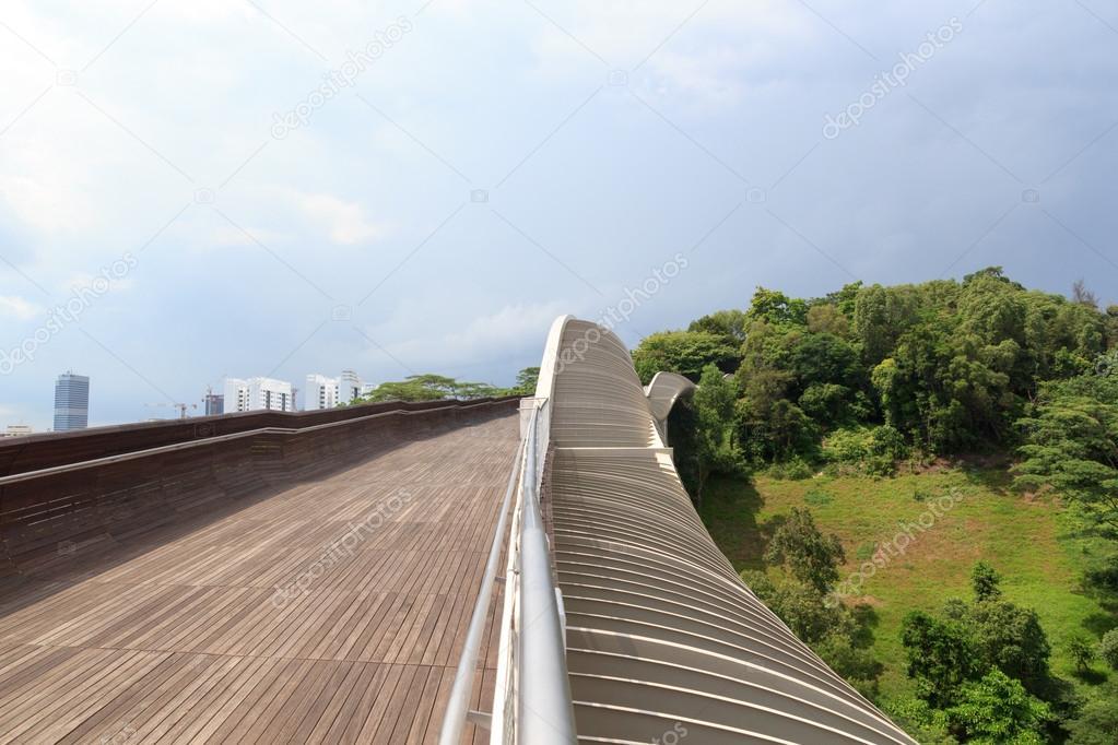 Henderson Waves bridge on Mount Faber rainforest, Singapore