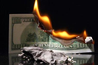 Dollars in fire, burning dollar, ashes. Crisis