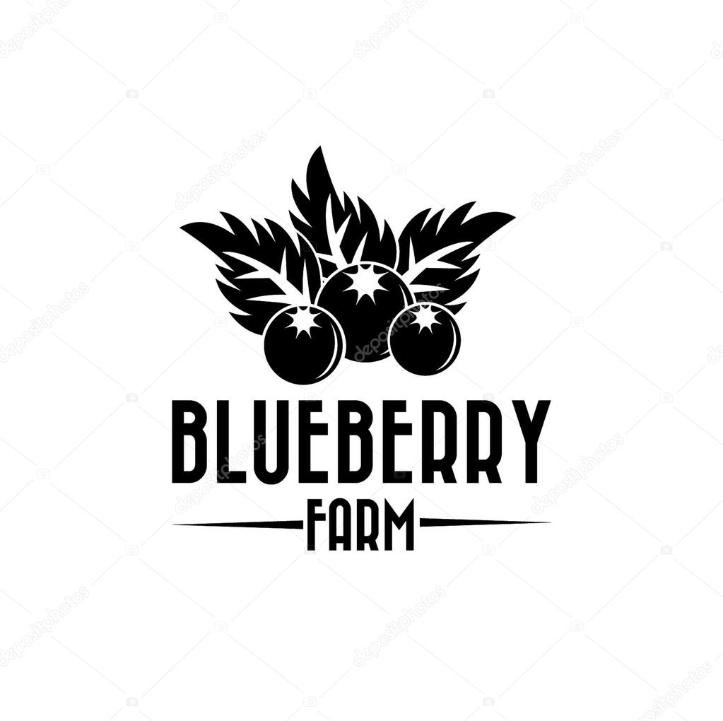blueberry farm illustration