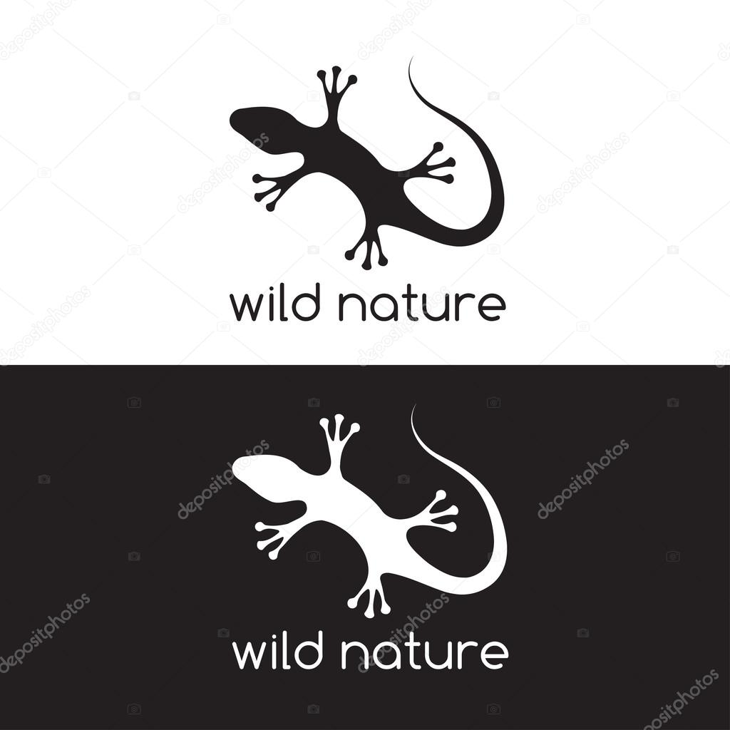 lizard vector design template