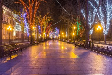 Lights and benches at night alley in Odessa, Ukraine