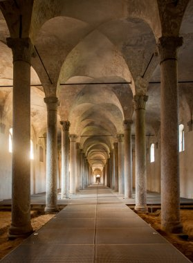 Ancient Stables, designed by Leonardo da Vinci, in Vigevano, Ita