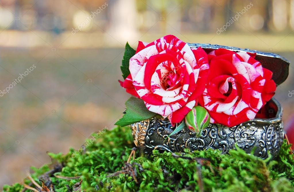 Ogród Z Dekoracji Florystycznych Projekt Florystyki