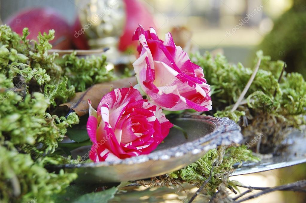 Tuin met floristic decoratie floristiek ontwerp. elementen in de