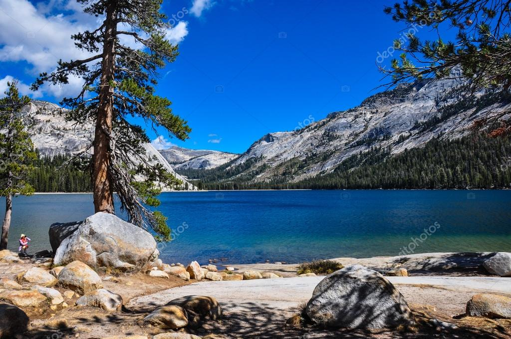 Gorgeous Yosemite National Park, California, USA