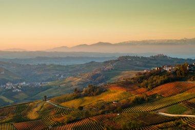 Hills and vineyards in Langhe region, Piedmont Italy