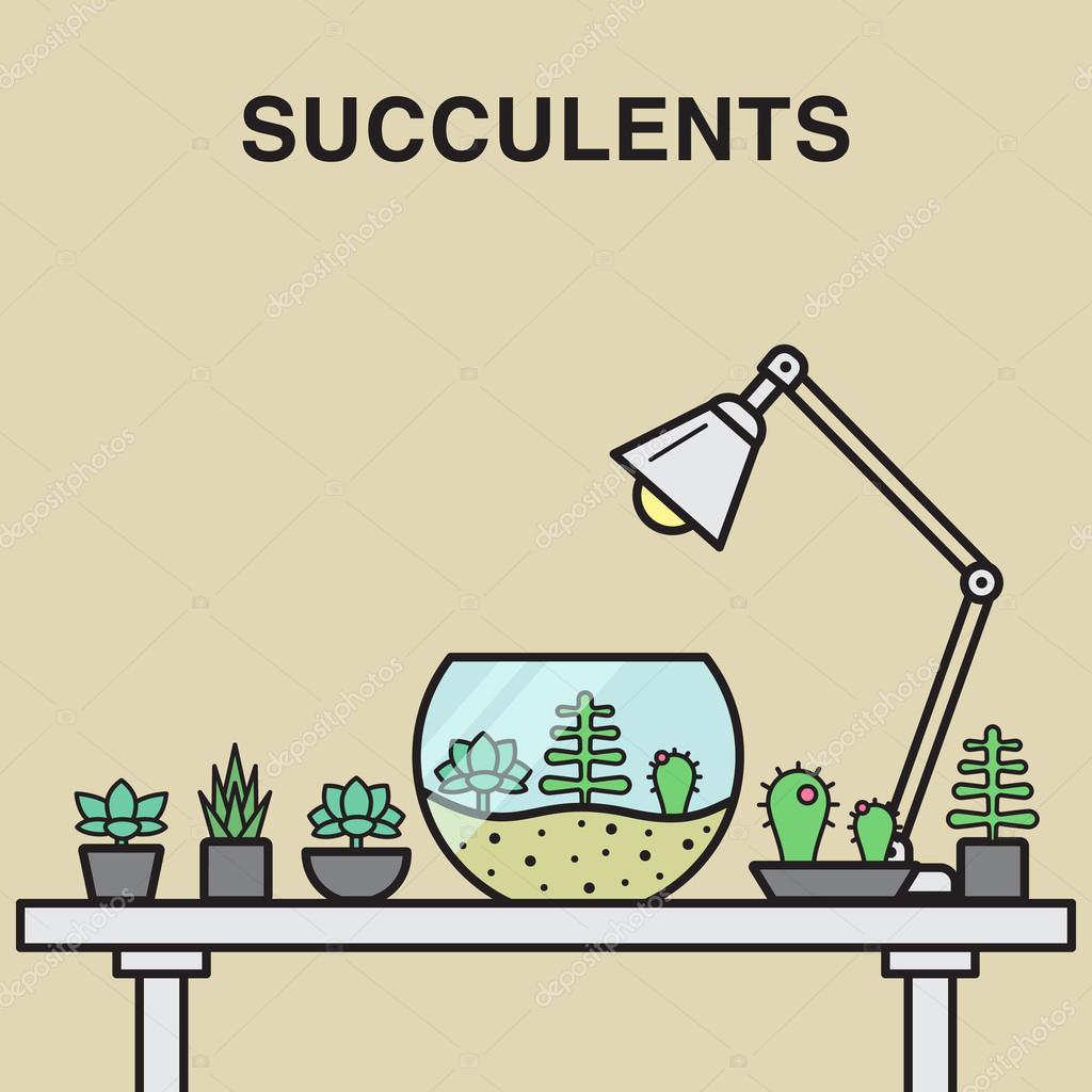 Succulent flowers in pots.