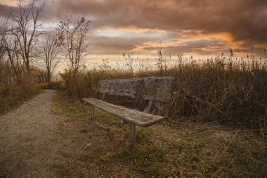 empty park bench waits for a guest under a vibrant sunset