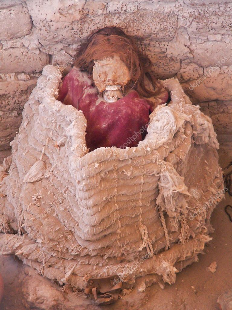 The gallery for --> Human Decomposition In A Coffin Human Decomposition Time Lapse