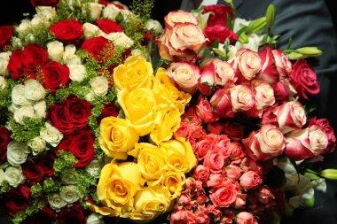 Bouquet Of Roses, big, huge stock vector