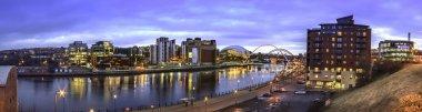 Tyne Sage Panorama 1