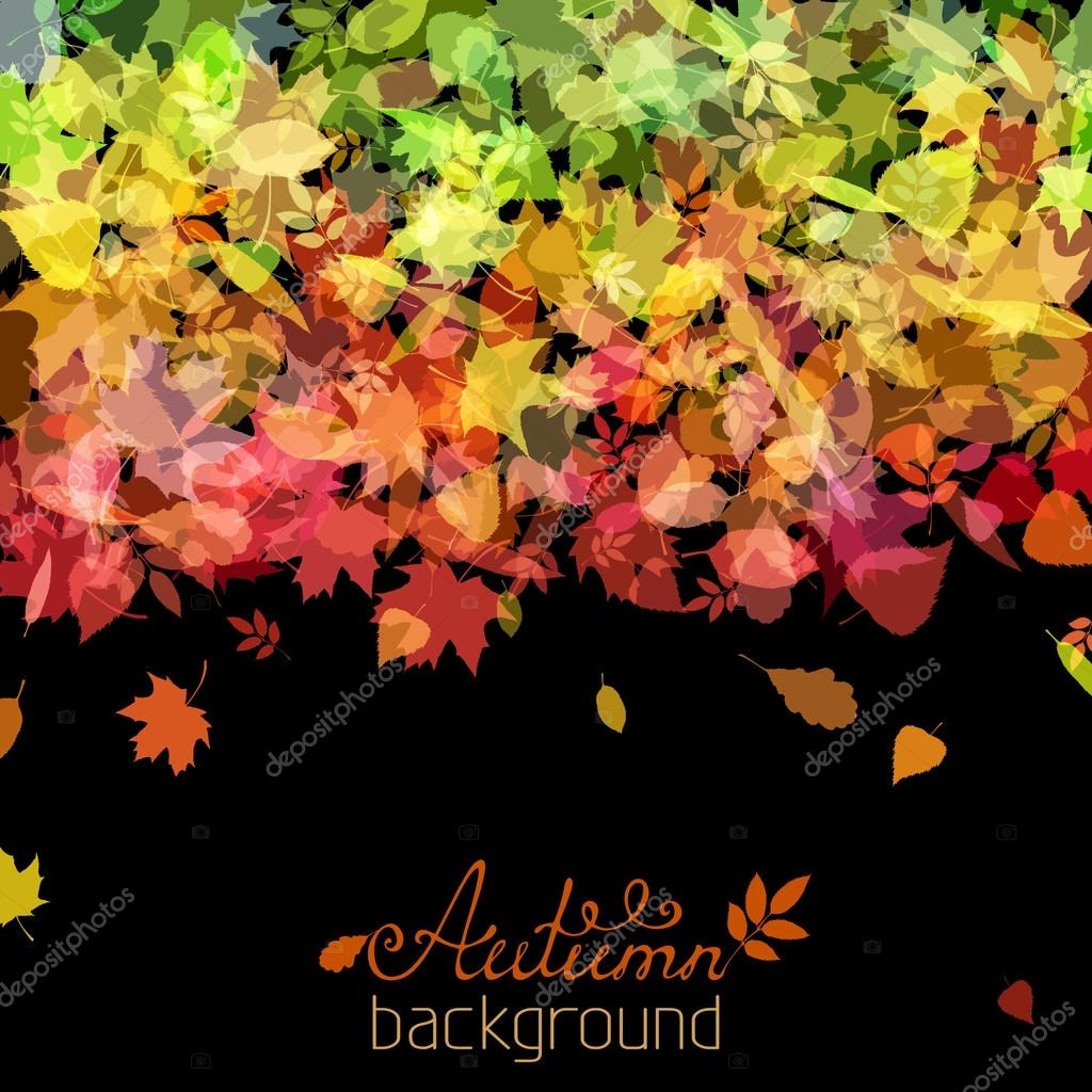 Colourful autumn background.