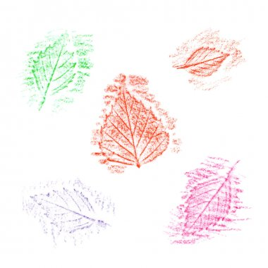 Set of hand-drawn leaves.