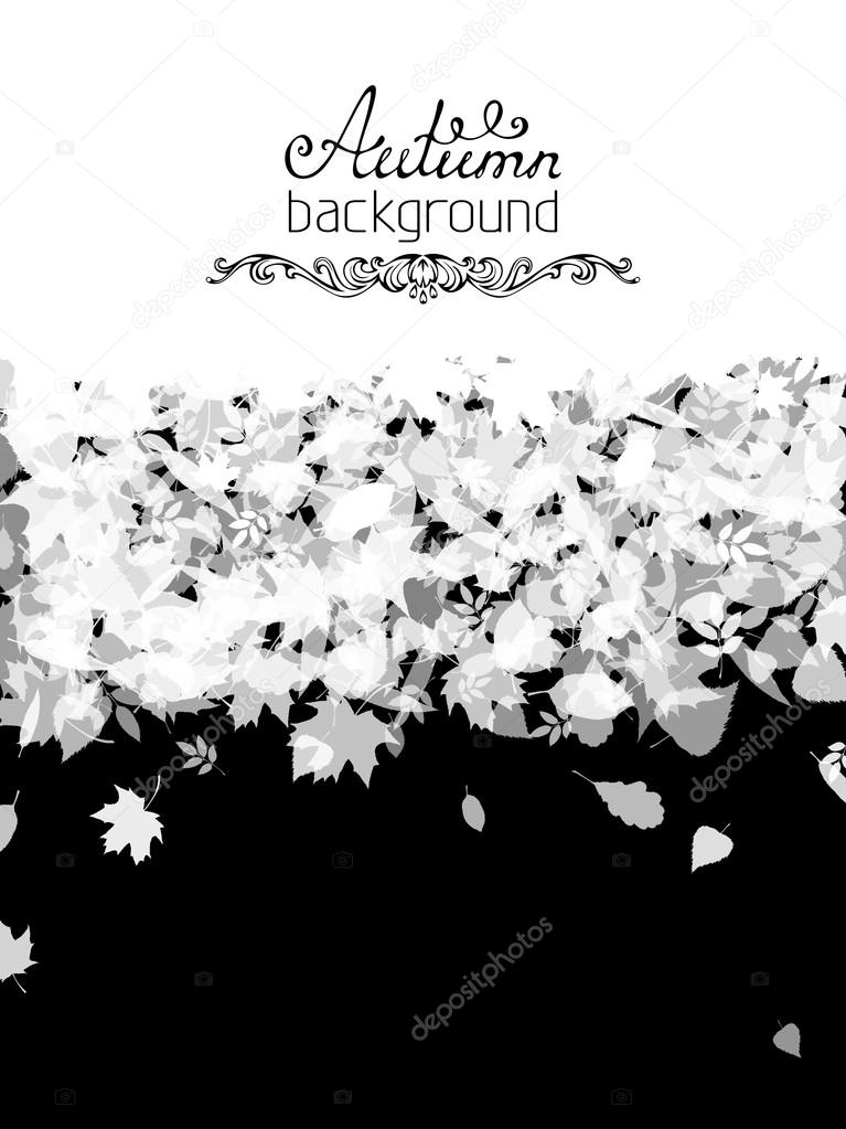 Black and white vector nature background.