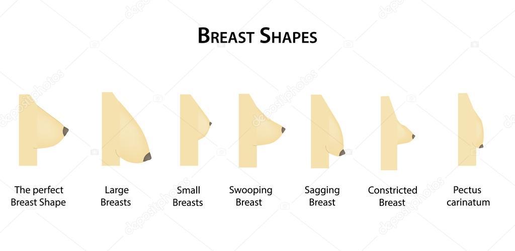 Любительские формы груди девушек масле видео очаровательная