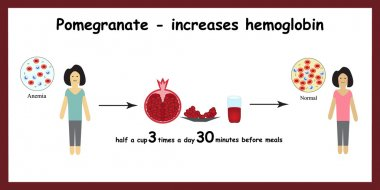 Anemia. The reduced amount of red blood cells. Garnet increases hemoglobin in the blood. Infographics. Vector illustration
