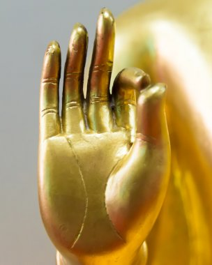 Buddha hand in peace sign