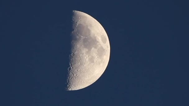 primer cuarto de luna — Vídeos de Stock © igordabari #122730170