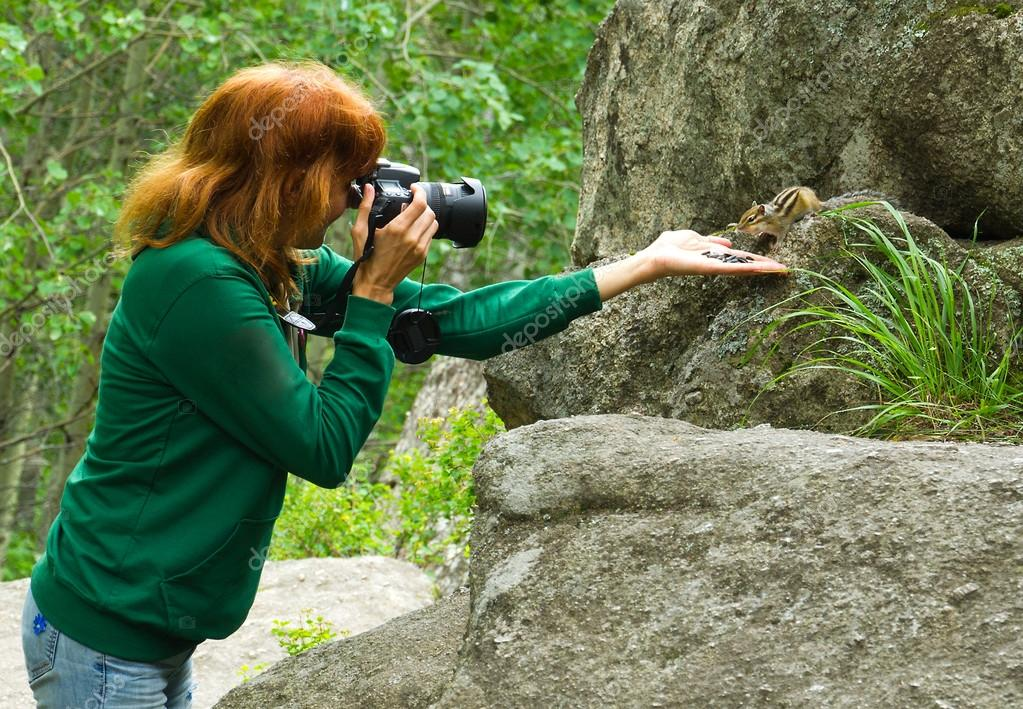 Fotographer wildlife chipmunk