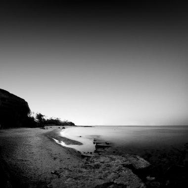 black and white dark scape