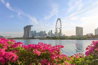 View of central Singapore