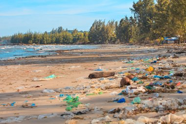 Terrible pollution of the ocean shore.