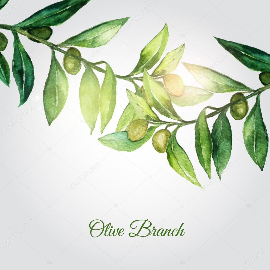 Vector watercolor hand drawn olive branch background with green leaves and shiny particles.