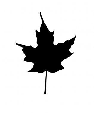 Maple leaf silhouette