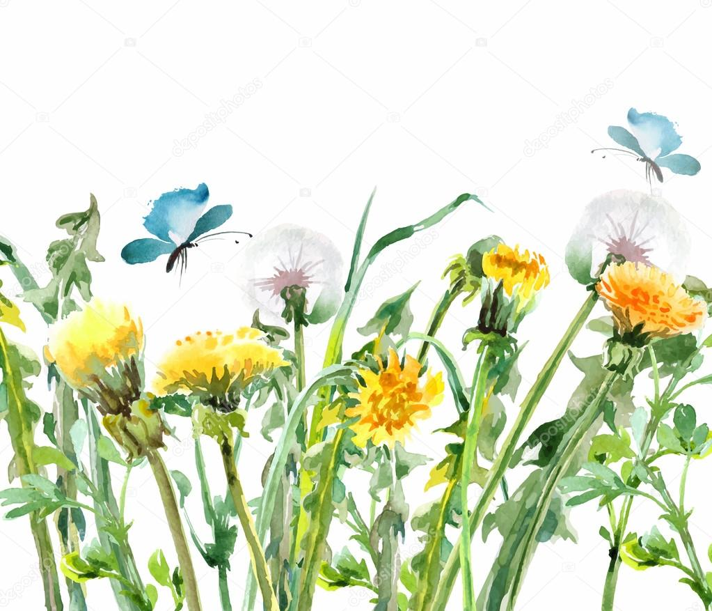 Dandelions. Yellow flowers with butterflies.