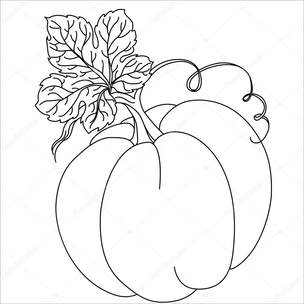 Black Pumpkin Isolated On White Flat Design Style Vector