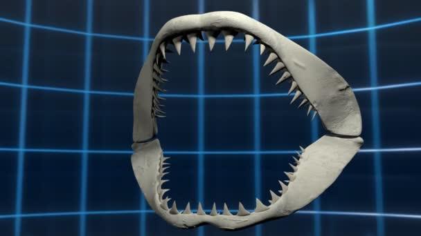 Apertura della bocca di uno squalo bianco