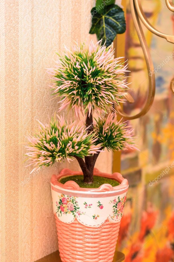 Pot on the table with pine trees in interior of apartment