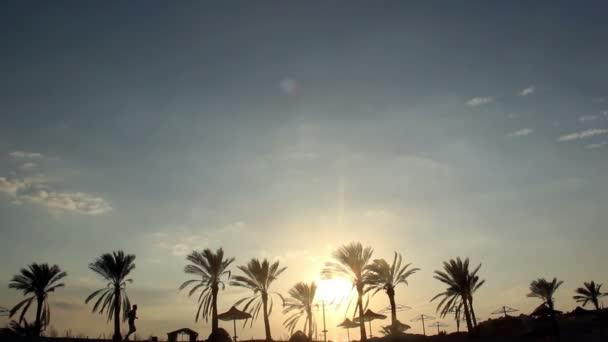 Silueta muže běží pod dlaní za svítání