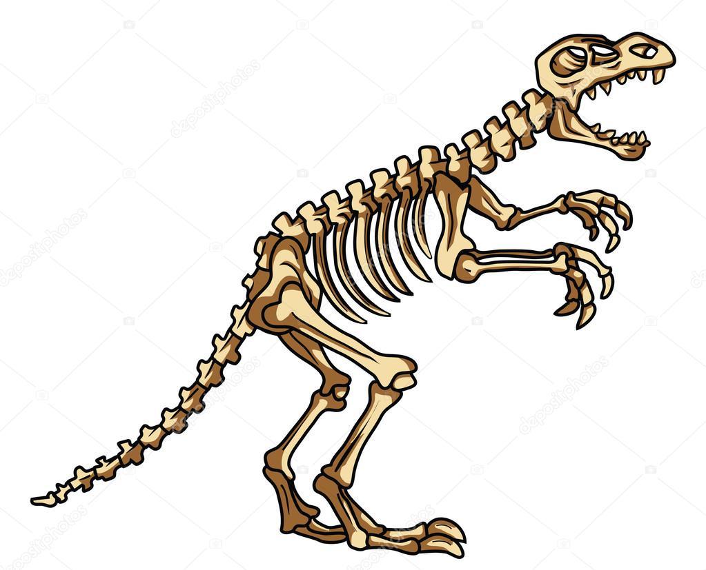 Coloriage Dinosaure Fossiles.Fossile De Dinosaure Image Vectorielle Funwayillustration C 54805131