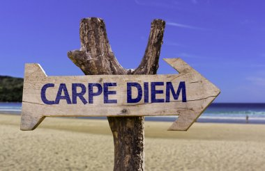 Carpe Diem wooden sign