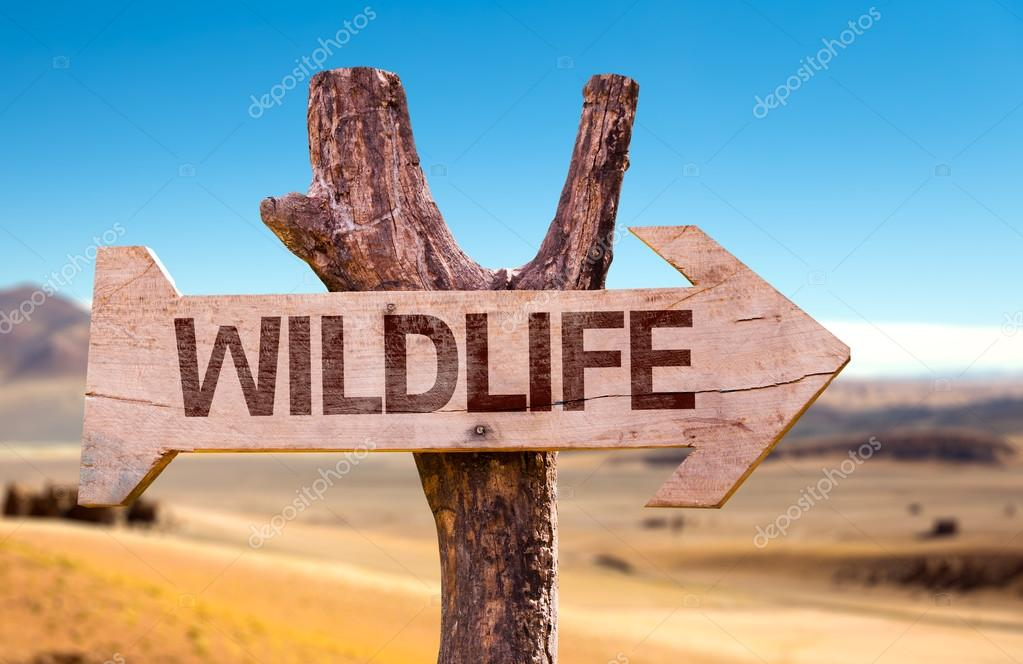 Wildlife wooden sign