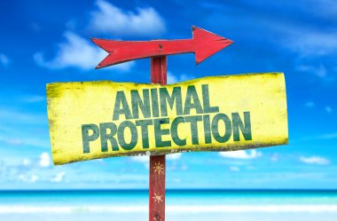 Animal Protection text sign
