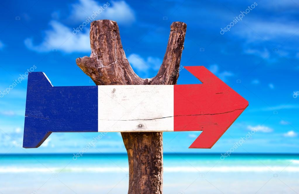 France Flag wooden sign