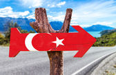 Fotografie Turkey Flag wooden sign